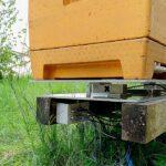 detalle de una colmena montada sobre una balanza digital de Hivewatch