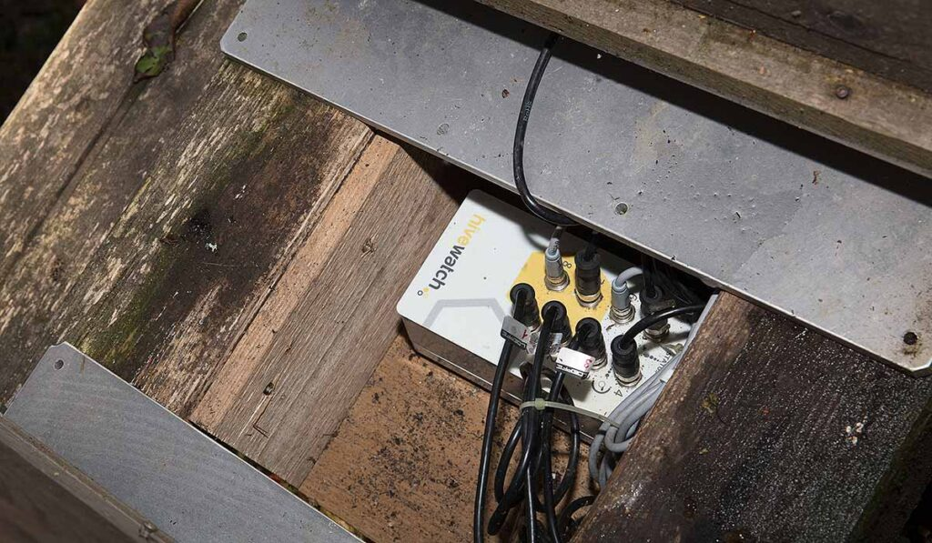 transmisor de la báscula digital de colmenas de Hivewatch