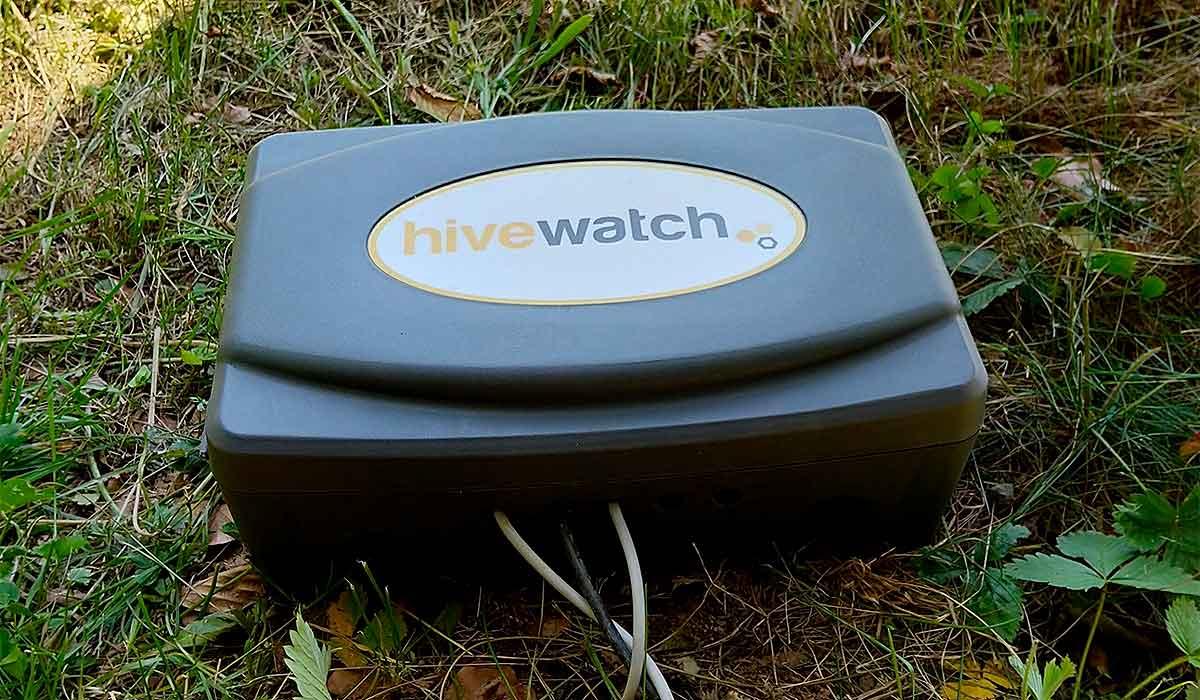 La caja protectora de las básculas para colmenas de HiveWatch